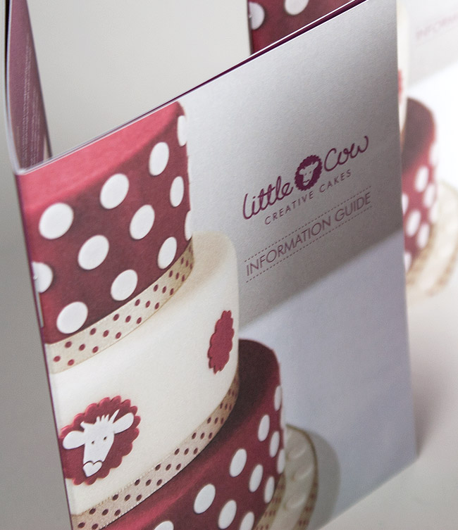 A6 8 page information booklet design by Wetdog Creative in Cornwall