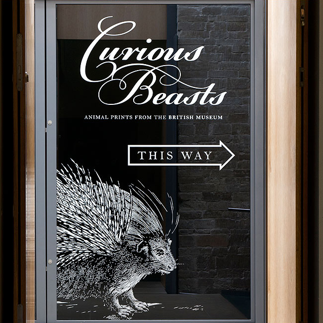 Curious Beasts Bespoke Graphics Designed by Wetdog Creative