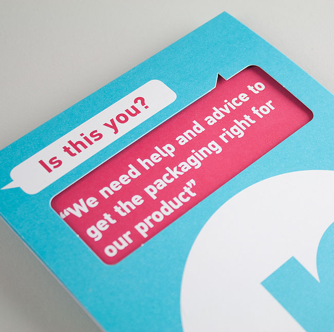 Two colour litho printed folded and die-cut mailer